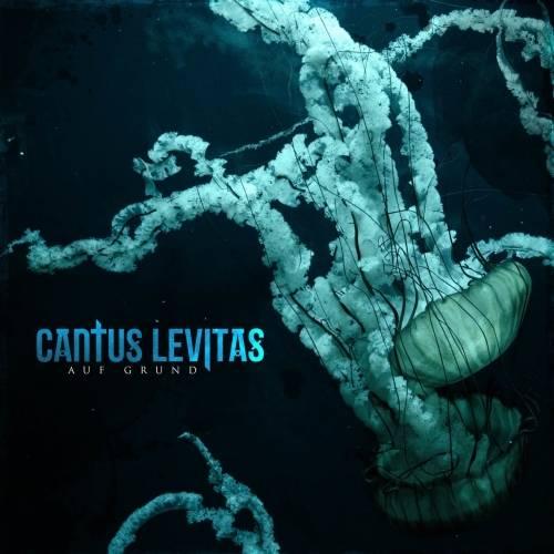 Cantus Levitas - Auf Grund