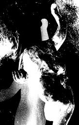 Paragon Impure - Untitled