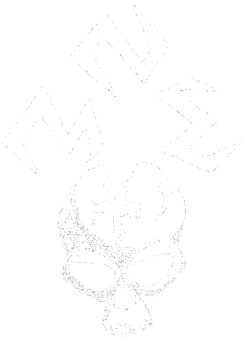 NME - Logo