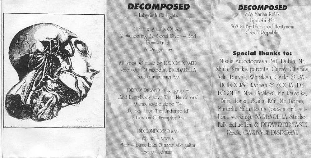 Decomposed - Labyrinth of Lights