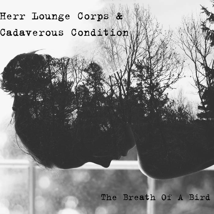 Cadaverous Condition - The Breath of a Bird