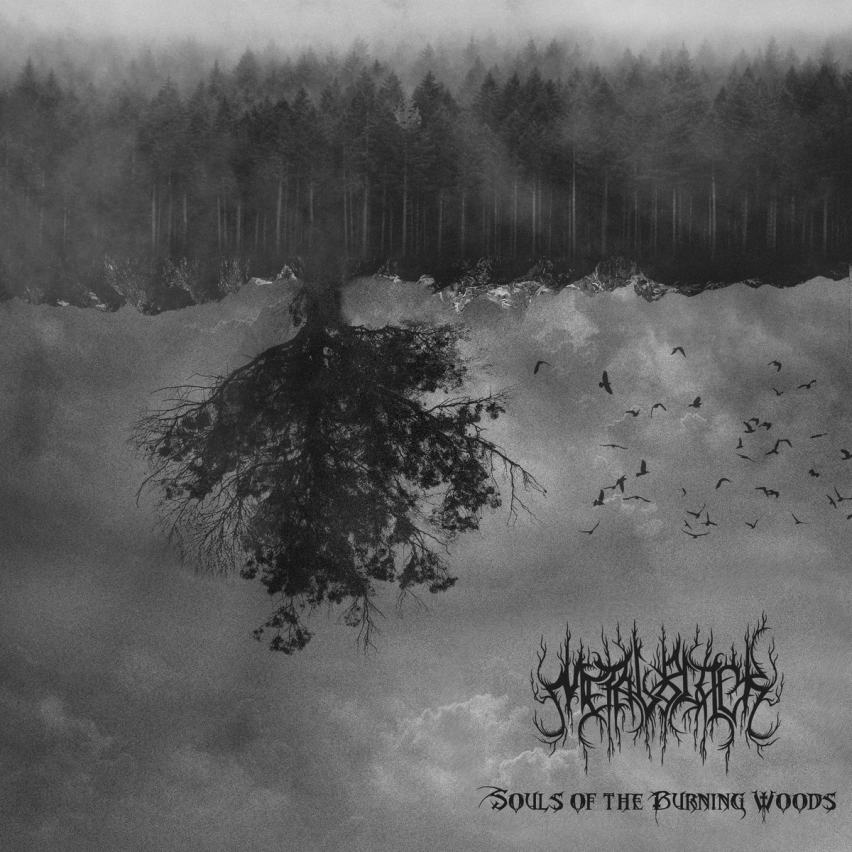MetalBlack - Souls of the Burning Woods