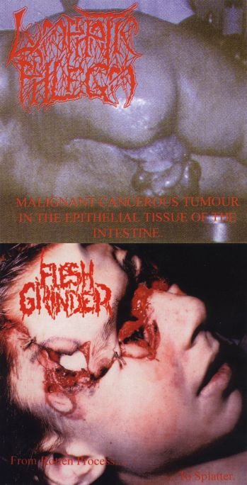 Flesh Grinder / Lymphatic Phlegm - From Rotten Process... to Splatter / Malignant Cancerous Tumour in the Epithelial Tissue of the Intestine