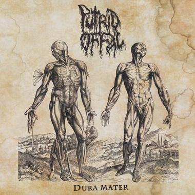 Putrid Offal - Dura Mater
