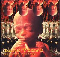 Dark Views - Perfect Society