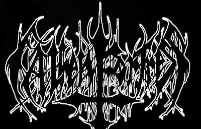 Fallen Fortress - Logo