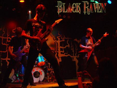Black Raven - Photo