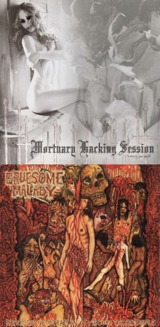 Gruesome Malady / Mortuary Hacking Session - Torturing Your Ghost / Frenzied Evisceration of Viscous Excrescence