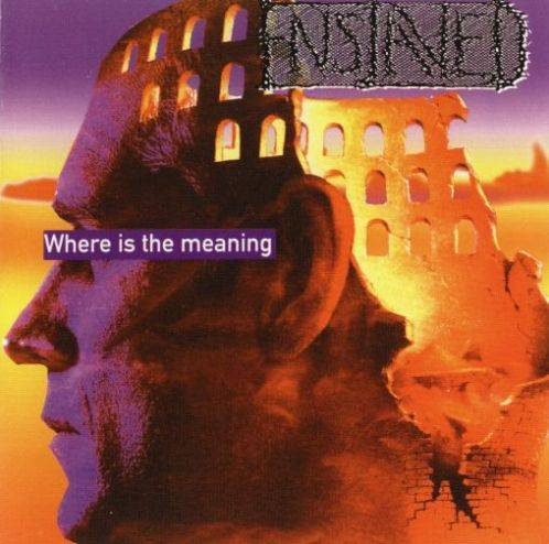 Enslaved - Where is the Meaning