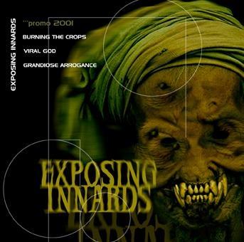 Exposing Innards - Promo 2001
