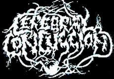 Cerebral Concussion - Logo