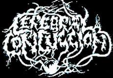 Cerebral Concussion - Logo
