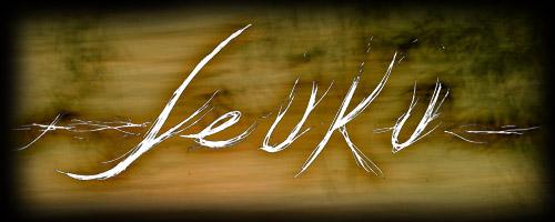 Leuku - Logo