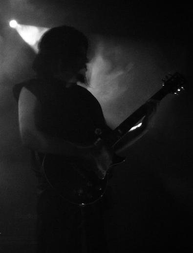 Acceptus Noctifer - Photo