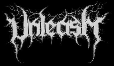 Unleash - Logo