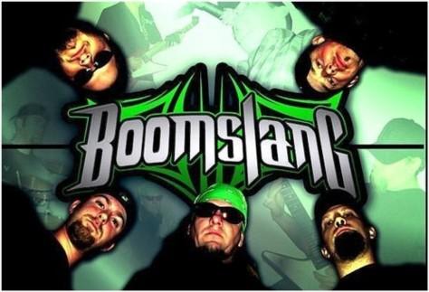Boomslang - Photo