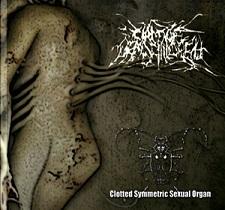 Circle of Dead Children / Clotted Symmetric Sexual Organ - Circle of Dead Children / C.S.S.O.