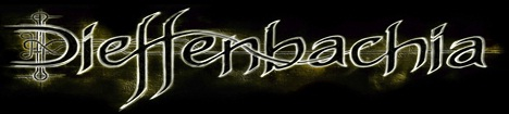 Dieffenbachia - Logo