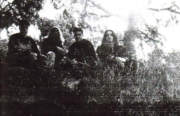 Hemlock - Photo