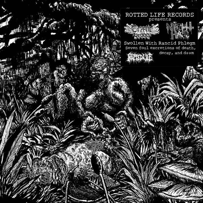 Night Hag / Cryptic Brood - Swollen with Rancid Phlegm