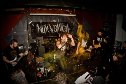 Nux Vomica - Photo