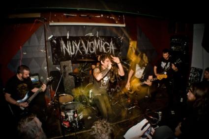 Nux Vomica - Photo