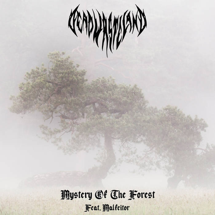 Dead Wasteland - Mystery of the Forest