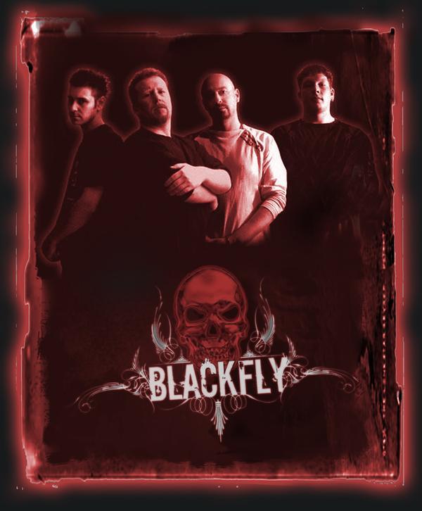 Blackfly - Photo