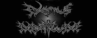 Nemus Mortuum - Logo