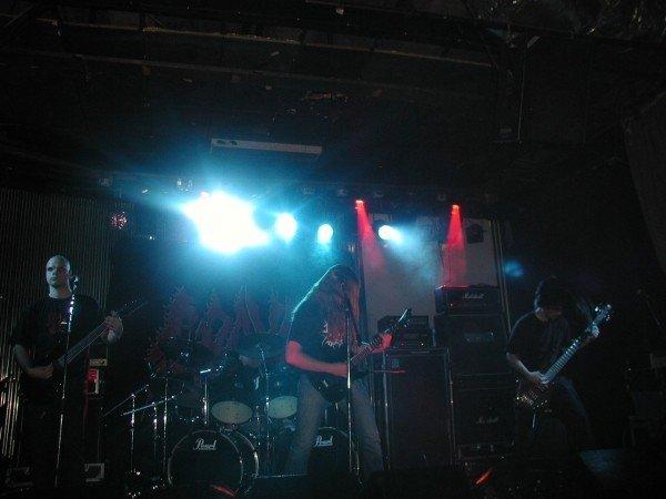 Imperious - Photo