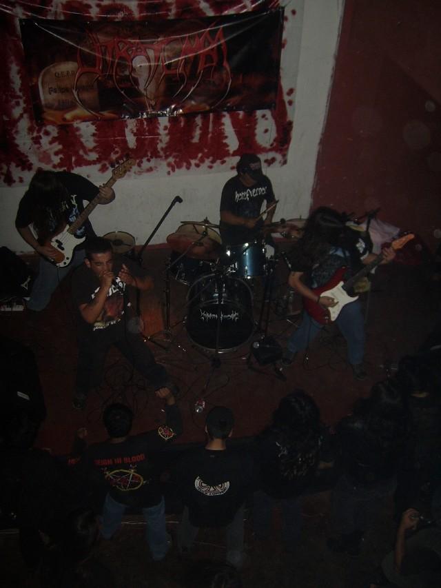 Triquinosis - Photo