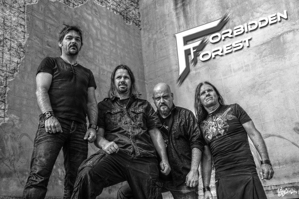 Forbidden Forest - Photo
