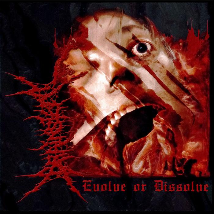 Brainstem - Evolve or Dissolve