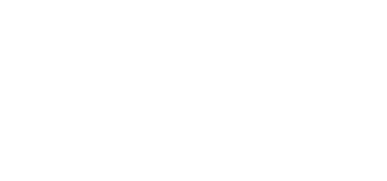 Secret Mutilation - Logo