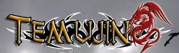 Temujin - Logo