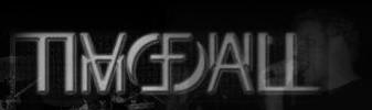 Timefall - Logo