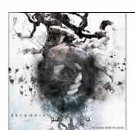 Reckoning - Weakness Sows Its Seeds
