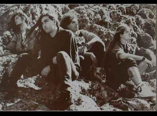 Hammerhead - Photo
