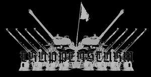 Truppensturm - Logo